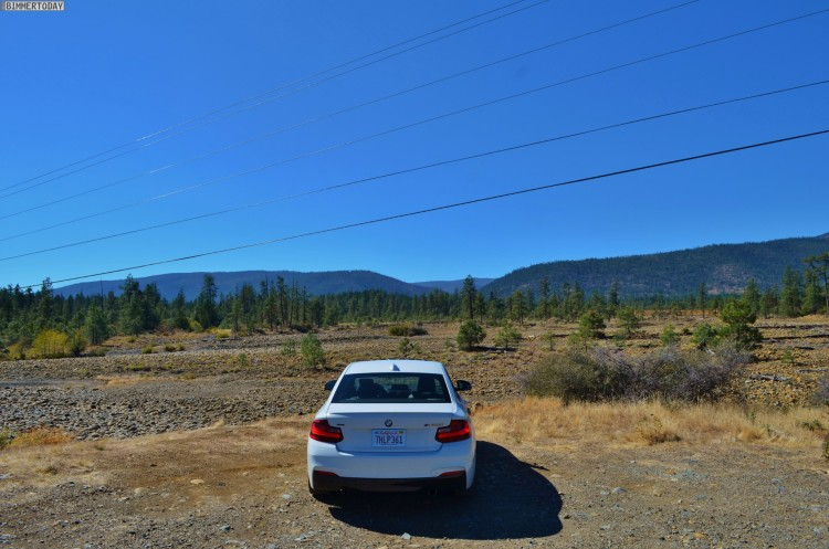 BMW-M235i-USA-Roadtrip-Redwood-National-Park02