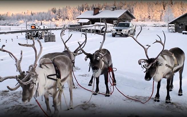 BimmerToday-Weihnachten-2010
