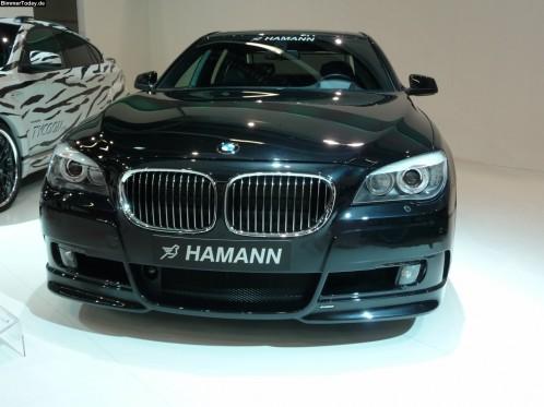 hamann-iaa-14